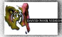 David Noir Vidéos